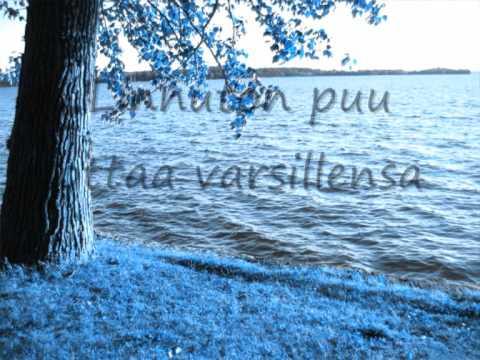 Anna Puu - Linnuton puu (Lyrics)