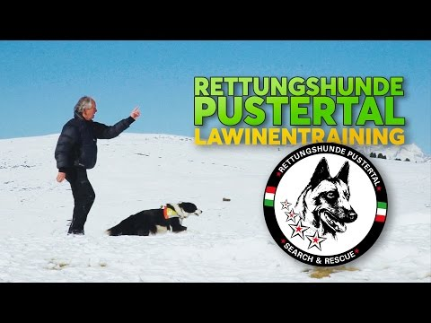 RETTUNGSHUNDE PUSTERTAL - LAWINEN TRAINING