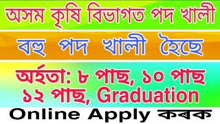 Assam Agriculture Recruitment 2019 // 8th Pass, 10th Pass, Graduated // Apply Online