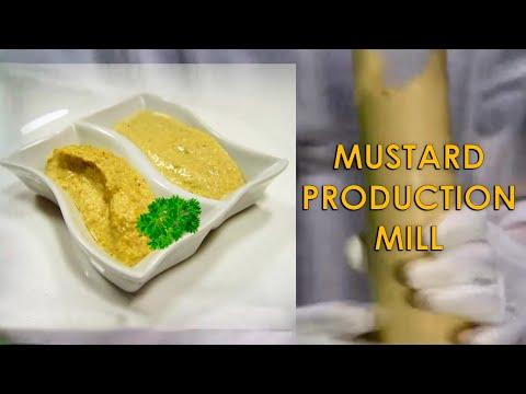 Colloid Mill Machine For Mustard Preparation