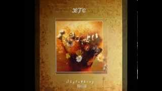"XTC ""Skylarking"" 2010 Ape House Records APELP044 45 RPM double LP r..."