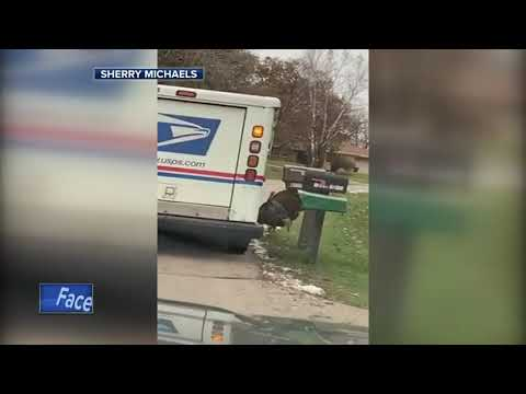 Pewaukee mail carrier 'stalked' by turkey for months