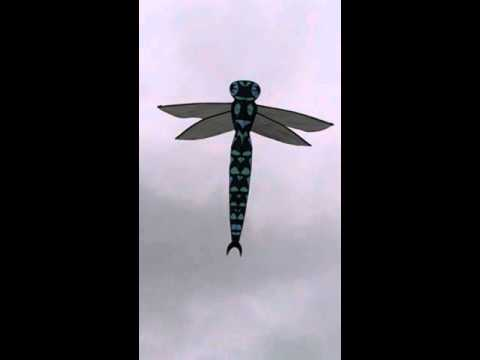 Premier Dragon Fly Kite