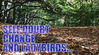 Self Doubt, Change and Ladybirds