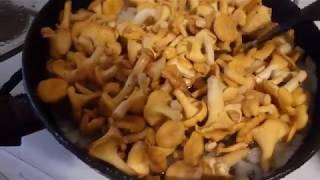 Как правильно жарить грибы, #ГалкинTV