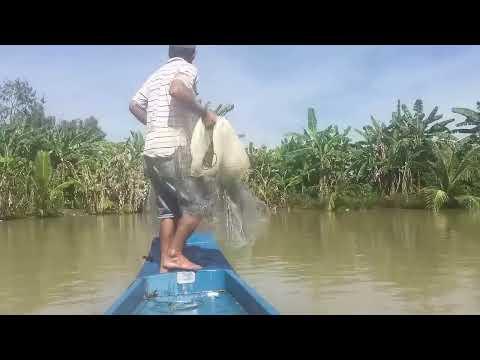 Top 4 Cast Net Fishing - Fisherman Vs. River Monsters