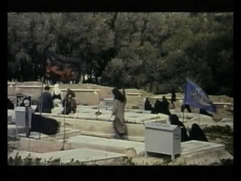 Through the Olive Trees - Trailer