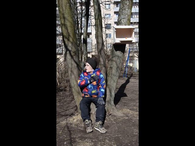 Изображение предпросмотра прочтения – ГлебРазумов читает произведение «Ворона» А.А.Блока