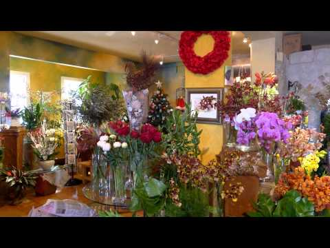 CALIFORNIA - SAUSALITO - FLOWER SHOP - ERNESTO CORTAZAR - IT WAS LOVE AT FIRST SIGHT
