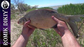 Весенняя рыбалка как она есть Май 2021г