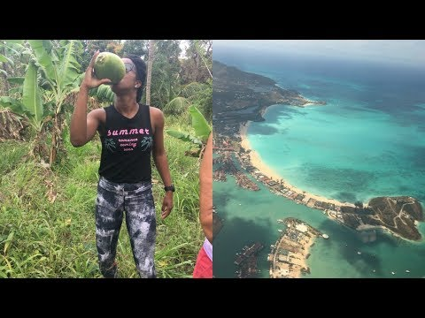 FARM, FLYING & FUN IN ANTIGUA-VLOG/Shaunz World