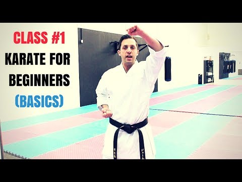 Martial Arts for Beginners – Lesson 1  Basic Karate Kid Techniques