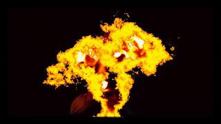 Raging Spirit Fox (Inspired by Joao Kaue)