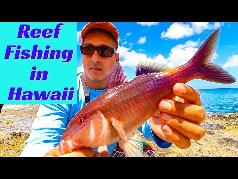 Hawaii Reef Fishing | Fishing In Hawaii | Hawaii Fishing | Hawaii Shore Fishing