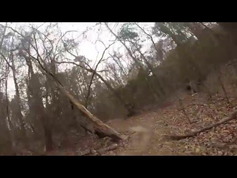 skogs mark dating