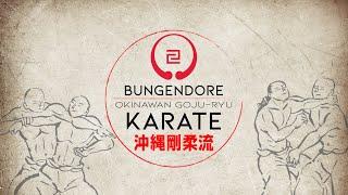 Karate Basics.