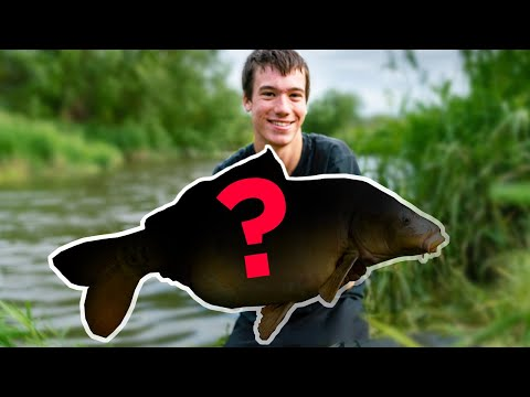 CARP FISHING - Quest For The Big Mirror!