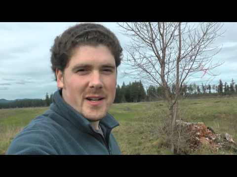 Vlog: Visit to the Mima Mounds