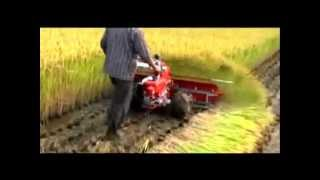 Rice Reaper/ Harvester.rmvb