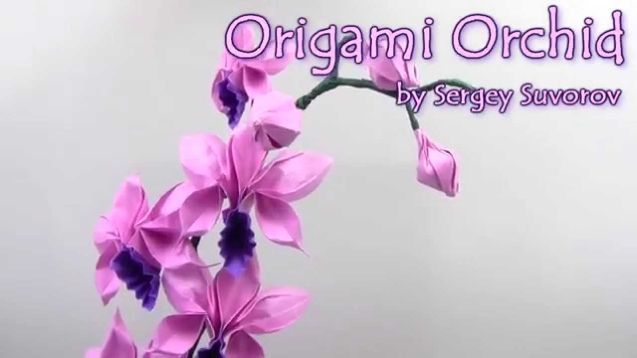 Origami orchid how to make origami orchid instructions easy and advanced origami folding instructions folding rabbit ears for an origami orchid part of the series mightylinksfo