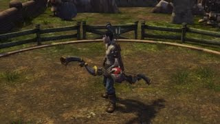Fable TLC And Anniversary How To Get Skorm