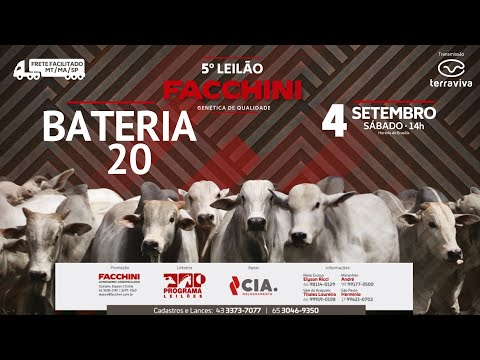 BATERIA 20 - 5º LEILÃO FACCHINI 04/09/2021