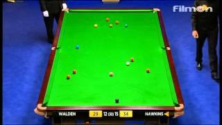 Barry Hawkins vs Ricky Walden  - WSC 2013 Semifinal