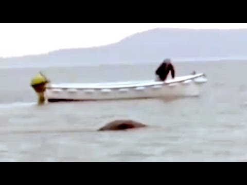 The Loch Ness Monster Footage