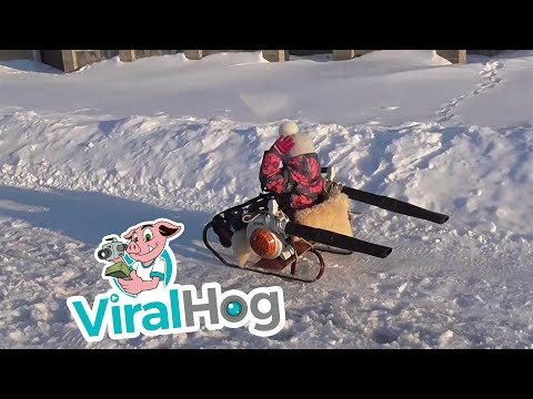 Leaf Blower Powered Turbo Snow Sled || ViralHog