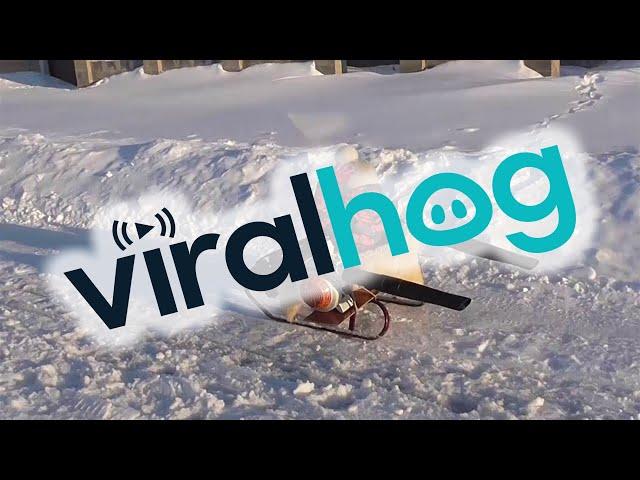 Leaf Blower Powered Turbo Snow Sled    ViralHog