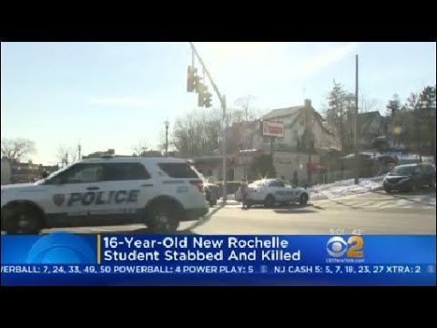 16-Year-Old New Rochelle Student Stabbed And Killed