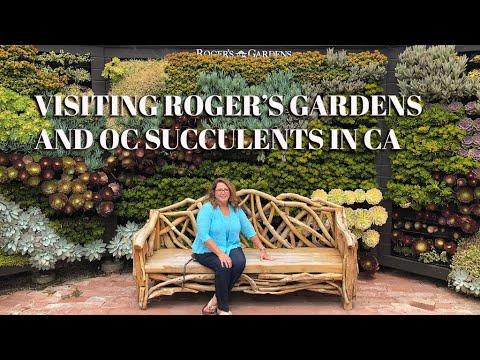 Succulent Nursery California Visiting