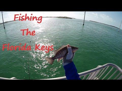 Fishing Toms Harbor Bridge In The Florida Keys