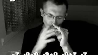Кукла колдуна (КиШ) табы для губной гармошки