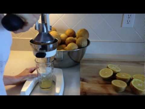 Storing Fresh Lemon Juice for Food Storage - Medium Term - 1-3 years - Prepper Tip :)