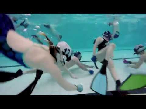 The Underwater Hockey Club
