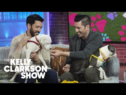 Property Brothers Star Jonathan Scott Finishes Magic Trick By Casually Eating a Dog Treat