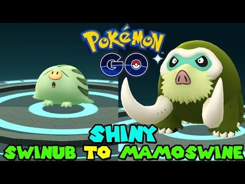 Evolving SHINY SWINUB TO SHINY MAMOSWINE IN POKEMON GO - SWINUB COMMUNITY DAY thumbnail