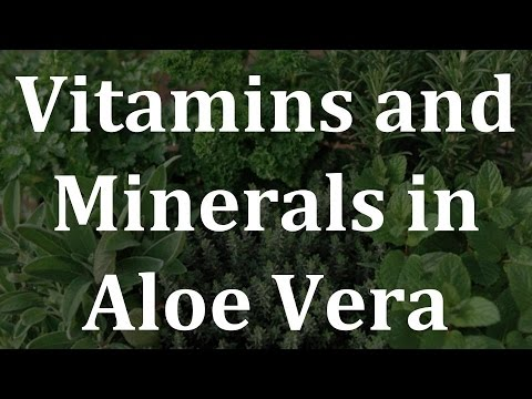 Vitamins and Minerals in Aloe Vera - Health Benefits of Aloe Vera