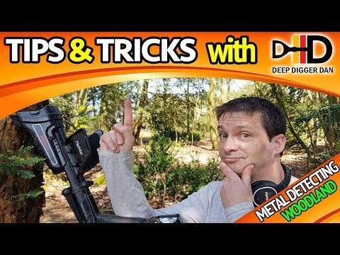 How To Metal Detect In The Woods: Tips & Tricks
