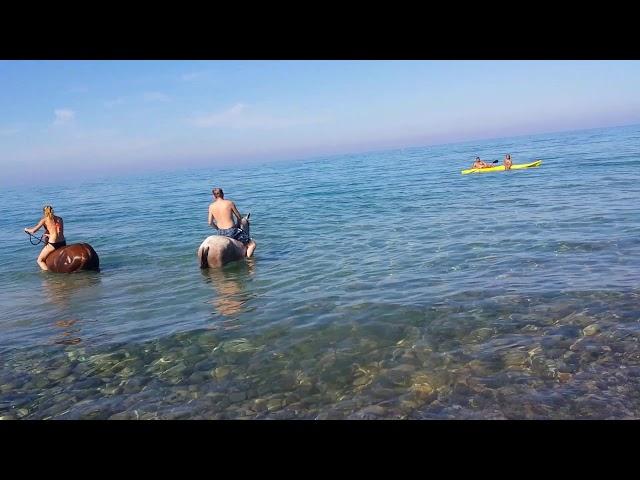 cavalcata in mare