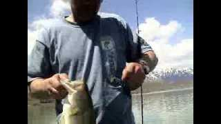 Bass Fishing Idaho 2008 Dave Langston ZEGO Boat
