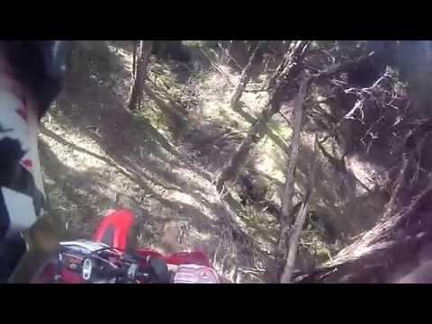 Beta 300 RR MY 2014, Trail Ride Culverden,Enduro Sections,Balmoral Station Rd New Zealand 23-11-2014