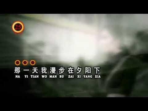 Dang Wo Xiang Ni De Shi Hou '当我想你的时候'