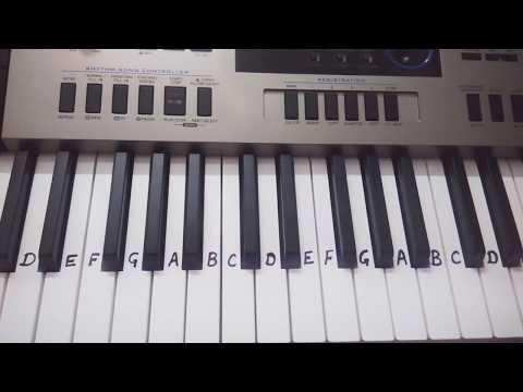 Sare jahan se acha on Piano keyboard Tutorial For Beginners Learners