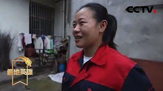 《遍地英雄》 20200529 大别山女孩的青春逆袭|CCTV农业