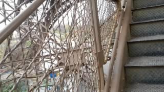 видео Эйфелева башня в Париже