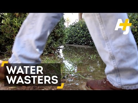 Water Wasters Beware, Don Is Coming After You