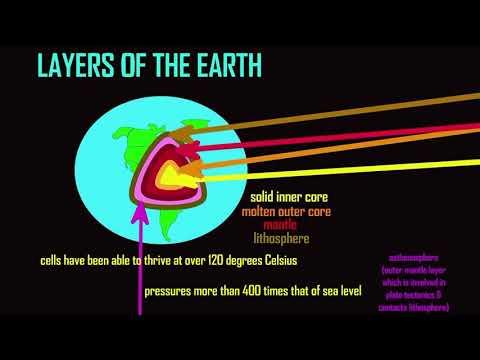 Download the deep biosphere