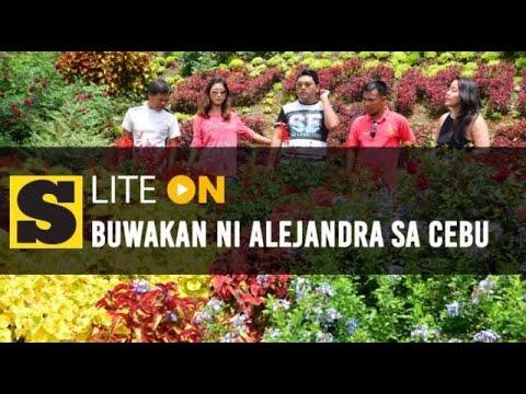 Super Suroy: Buwakan ni Alejandra sa Balamban, Cebu